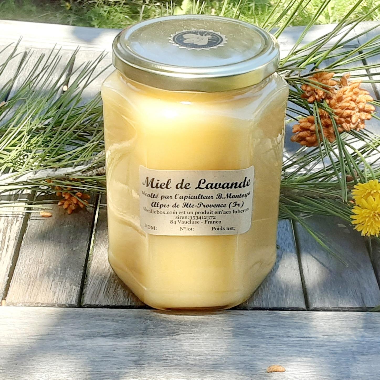 miel de lavande 1Kg récolté dans les Alpes de Haute-Provence